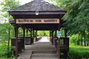 Białowieski Park Narodowy,